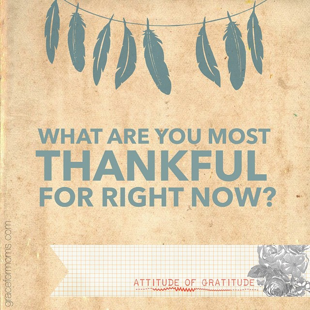 What are you most thankful for right now? Go!  #thanksgiving #graceandgratitude