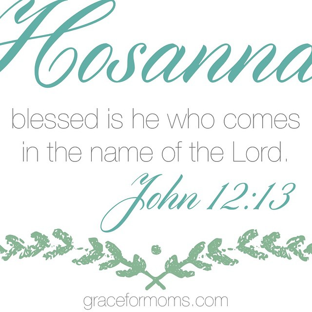 #palmsunday #sundayscripture