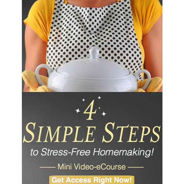 You guys! I need this free ecourse more than you can even imagine! We could all use some fresh strategies from time to time, yes?! Check out the details #ontheblog {link in profile} #homemaking #home #helpplease #itsfree