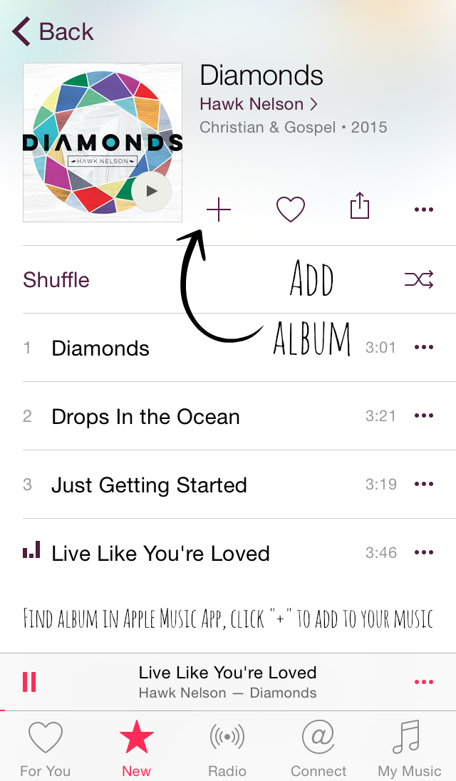 Apple Music Add Album