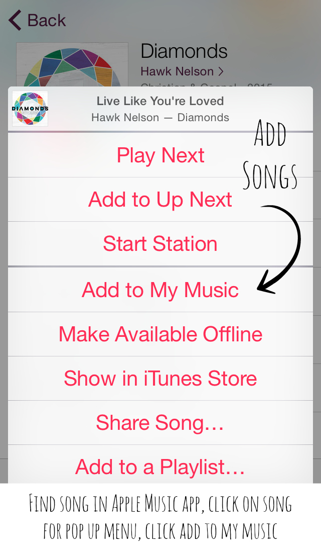 Apple Music Add Songs